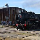 MAITLAND STEAMFEST  10.4.16 by Phil Woodman