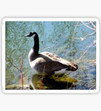 The Canada Goose  Sticker
