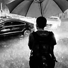 Waiting out the rain - Sydney NSW Australia by Norman Repacholi