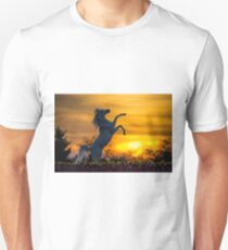 A Steed fit for a Queen.. Unisex T-Shirt