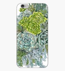Succulent Obsession iPhone Case