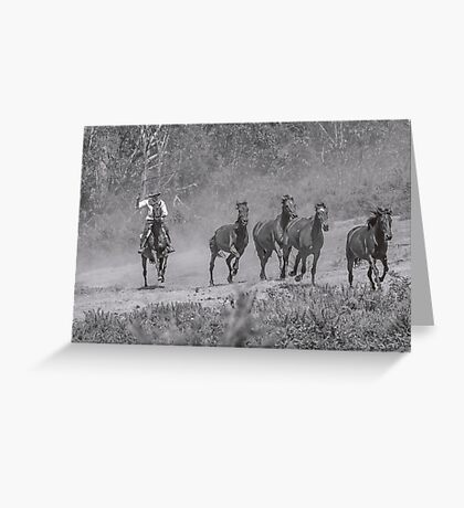 Bringing in the horses Greeting Card