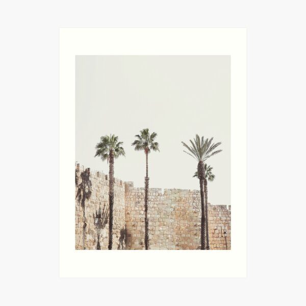 Jerusalem walls, palm trees, Holy Land Israel landscape, sacred landmark photography Art Print