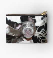Silly, Baby, Blue Pit Bull Puppy Dog  Studio Pouch