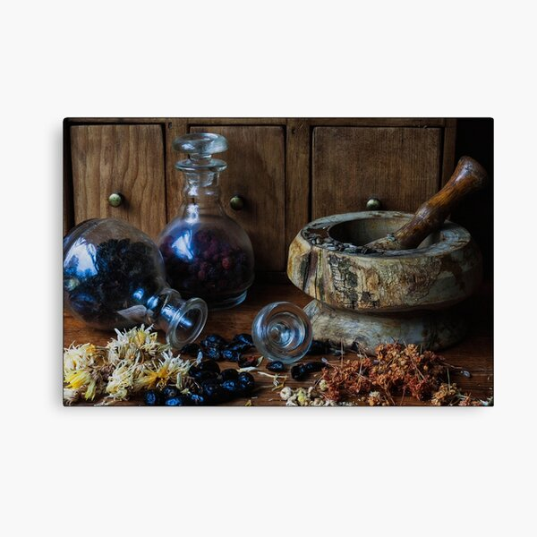 The Apothecary's Apprentice Canvas Print
