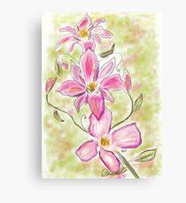 Digital Watercolour Pink Clematis Canvas Print