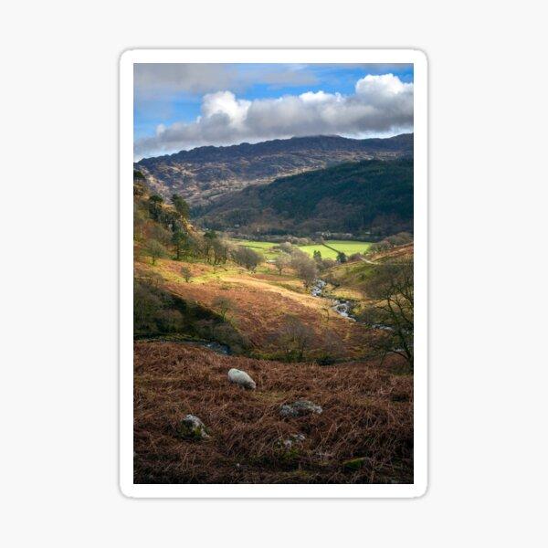 Welsh Landscape- from the Watkin path Sticker