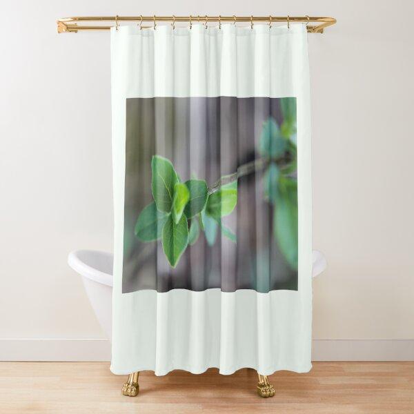 Fresh Life  Shower Curtain