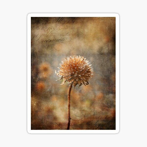 Autumn Bloom Sticker