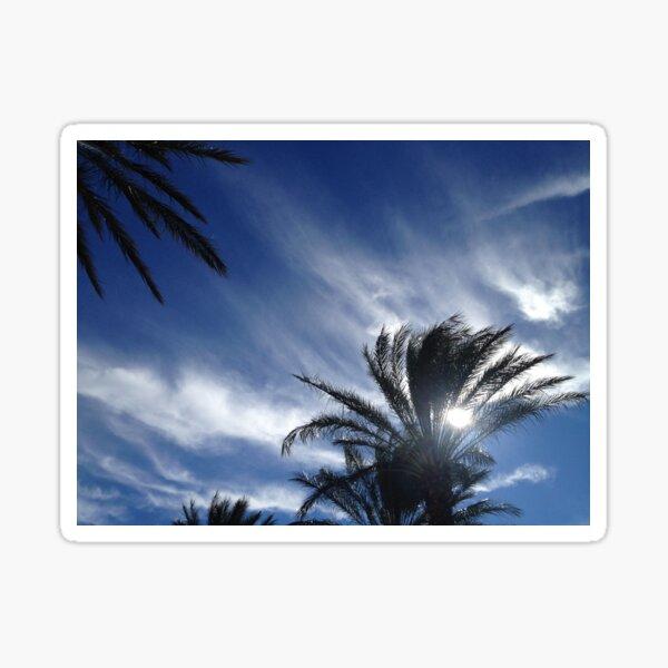 Palm Springs Winter Sky Sticker