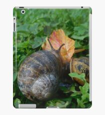 Snail and flower iPad Case/Skin