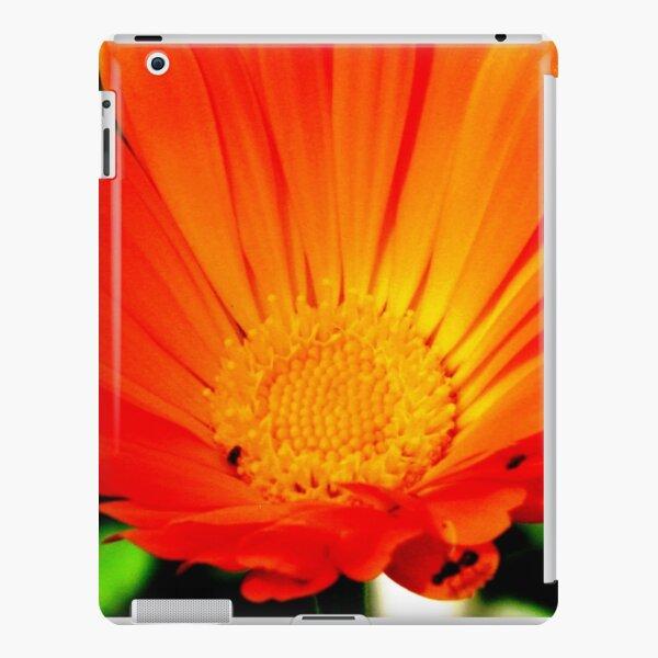 Calendula Beauty iPad Snap Case