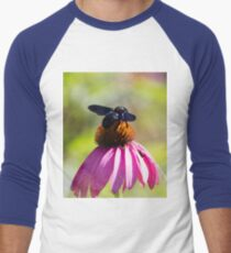bee on echinacea in the garden Men's Baseball ¾ T-Shirt