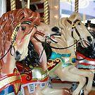 Carousel Horses - Four by Sophia Covington