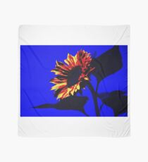 Burning Sunflower, Blue. Scarf