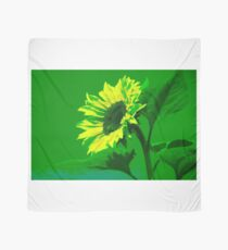 Burning Sunflower, Green. Scarf