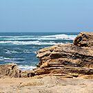 Ridge of Rock overlooking Lady Bay by Sophia Covington