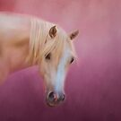 Pretty in Pink Palomino Horse Art by Michelle Wrighton