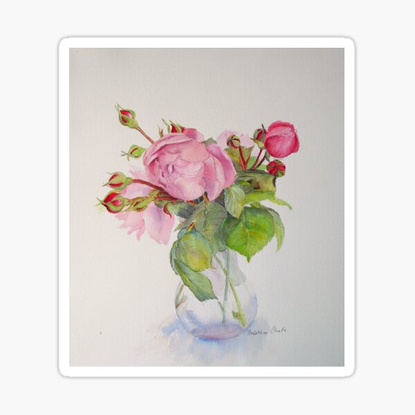 Watercolour of Old pink  roses Sticker