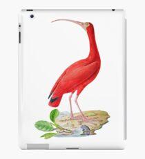 TIR-Brazil-Bird-5 iPad Case/Skin