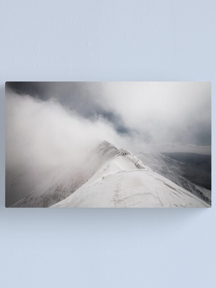 Alternate view of Revealing Canvas Print