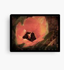 Tulip Grunge Canvas Print