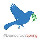 #DemocracySpring by Jessica Bone