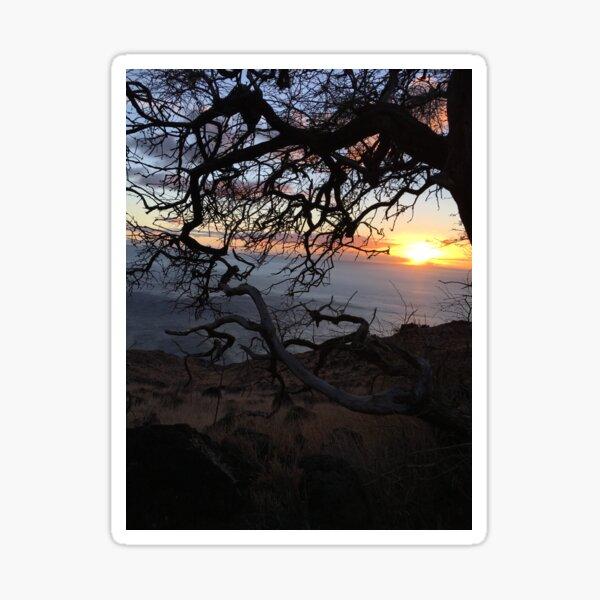 Tropical Sunset Sticker