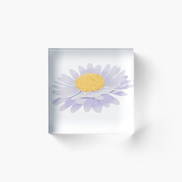 Purple daisy flower  Acrylic Block