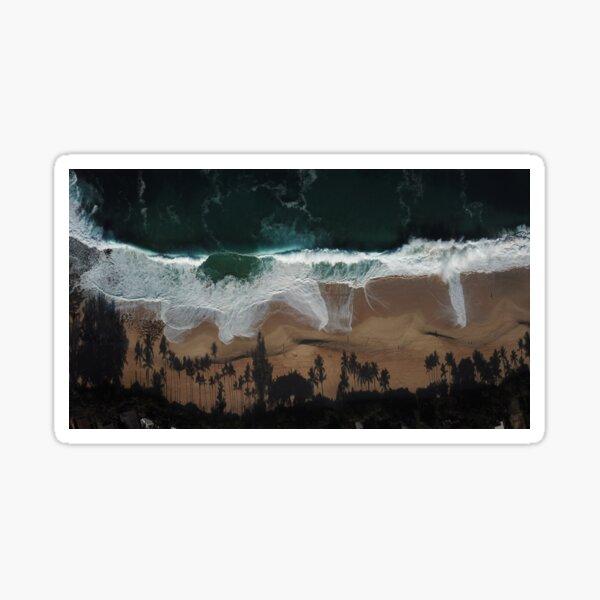 Shady Shore Sticker