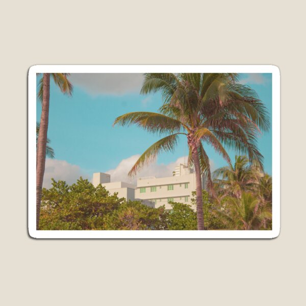 Miami House and Palm Tree Magnet