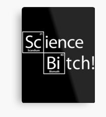 Science Bitch! Metal Print