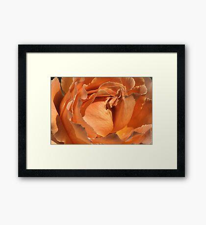 Orange Heart Framed Print