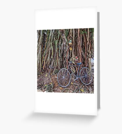 Bicycle and Tree Greeting Card