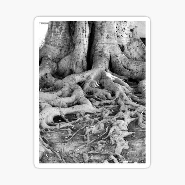 Library Tree Sticker