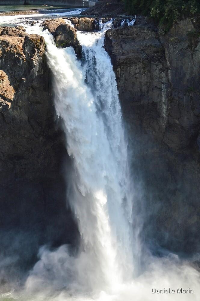 The Falls by Danielle Morin