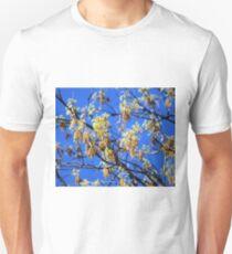 Spring has Sprung  T-Shirt