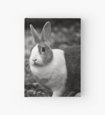 Bunny Buddies Hardcover Journal