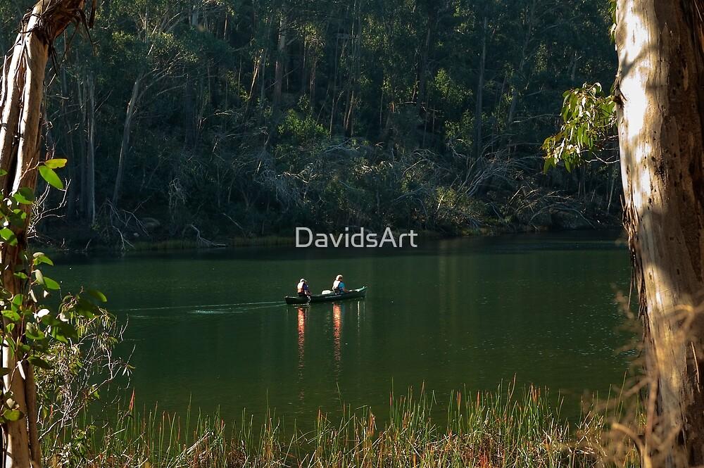 0888 Paddling your own Canoe by DavidsArt
