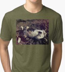 Playing cat Tri-blend T-Shirt