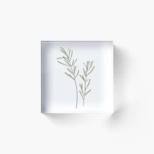 Rosemary, Alecrim Acrylic Block