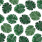Tropical Hand Painted Swiss Cheese Plant Leaves by Blkstrawberry