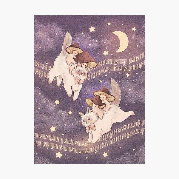 Starlit Cat Adventure - Background  Photographic Print