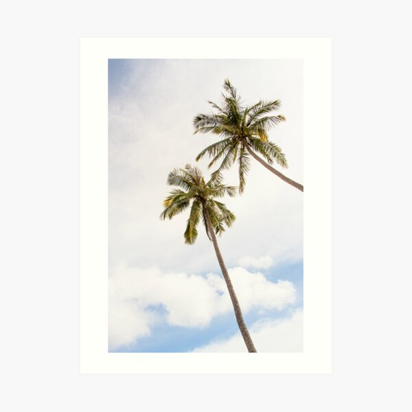 Palm trees, clouds and blue sky Art Print