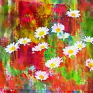 Daisies in an Abstract Red Field by Darlene Lankford Honeycutt
