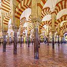 La Mezquita Interior - Cordoba - Spain by TonyCrehan