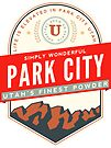 PARK CITY UTAH MOUNTAINS SKIING SKI SNOWBOARD by MyHandmadeSigns