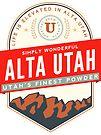 ALTA UTAH MOUNTAINS SKIING SKI LOGO by MyHandmadeSigns
