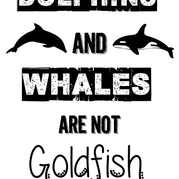 Dolphins and Whales are not Goldfish by Nagii