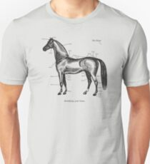 Identifying your horse Unisex T-Shirt